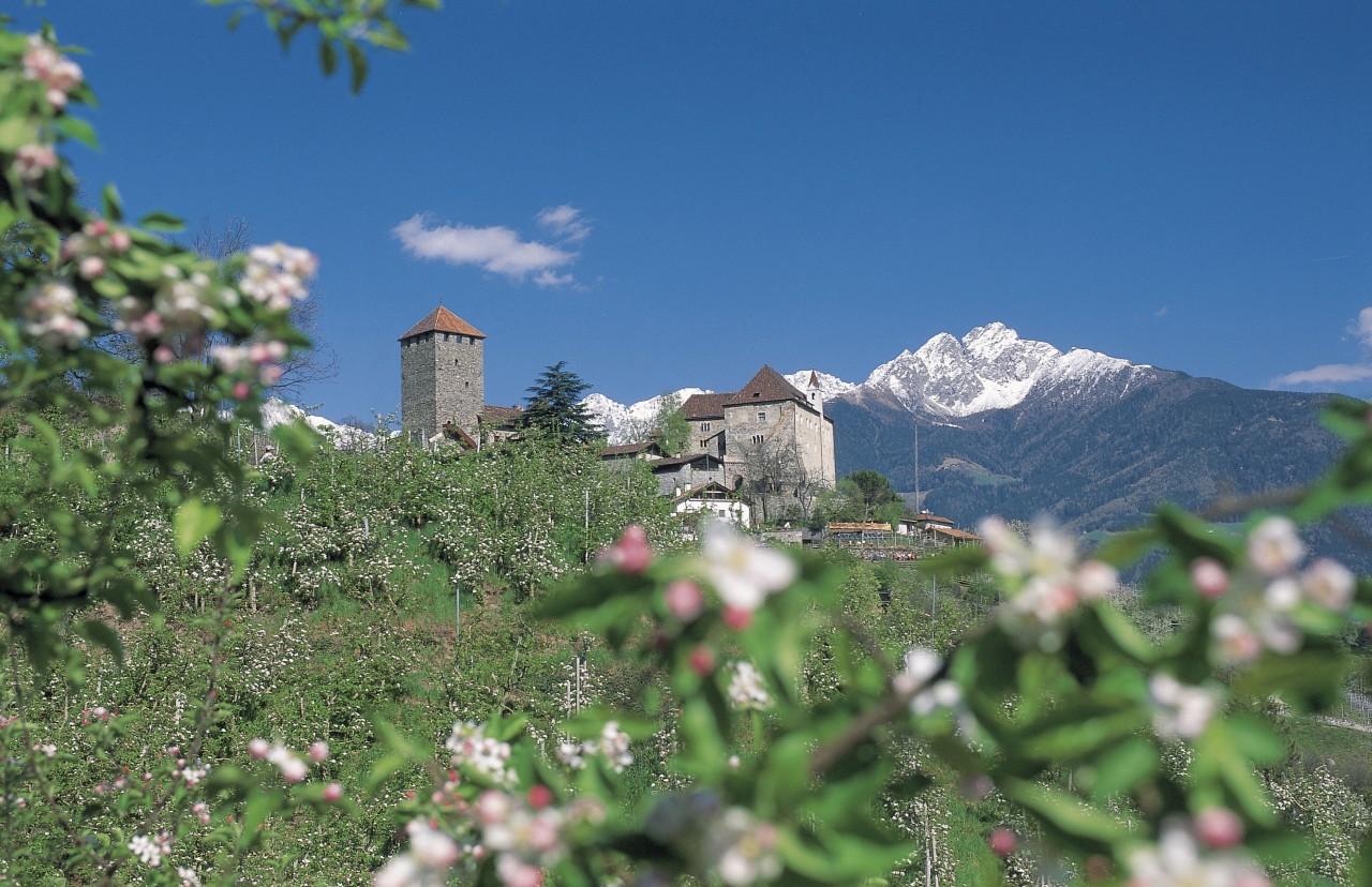 Sud Tirol Primavera